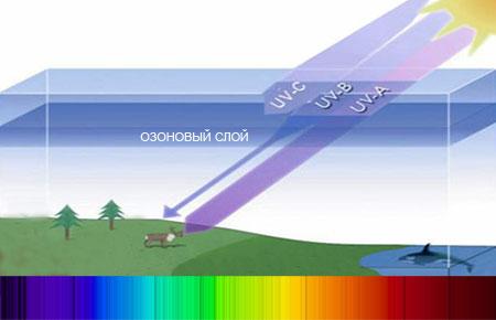 UV-лучи